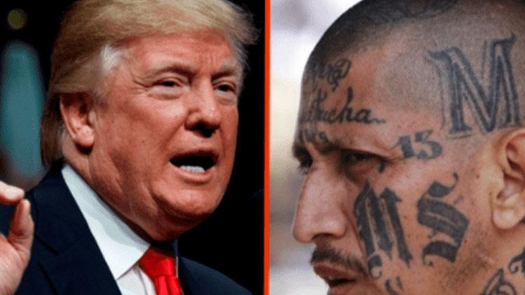 Donald-Trump-MS-13