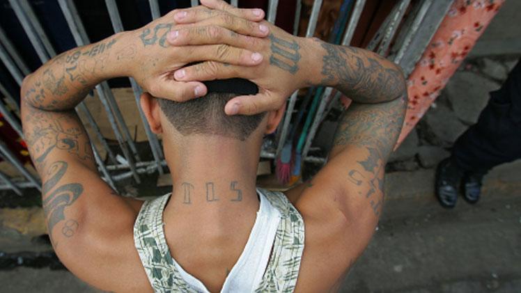 Mara Salvatrucha gang member